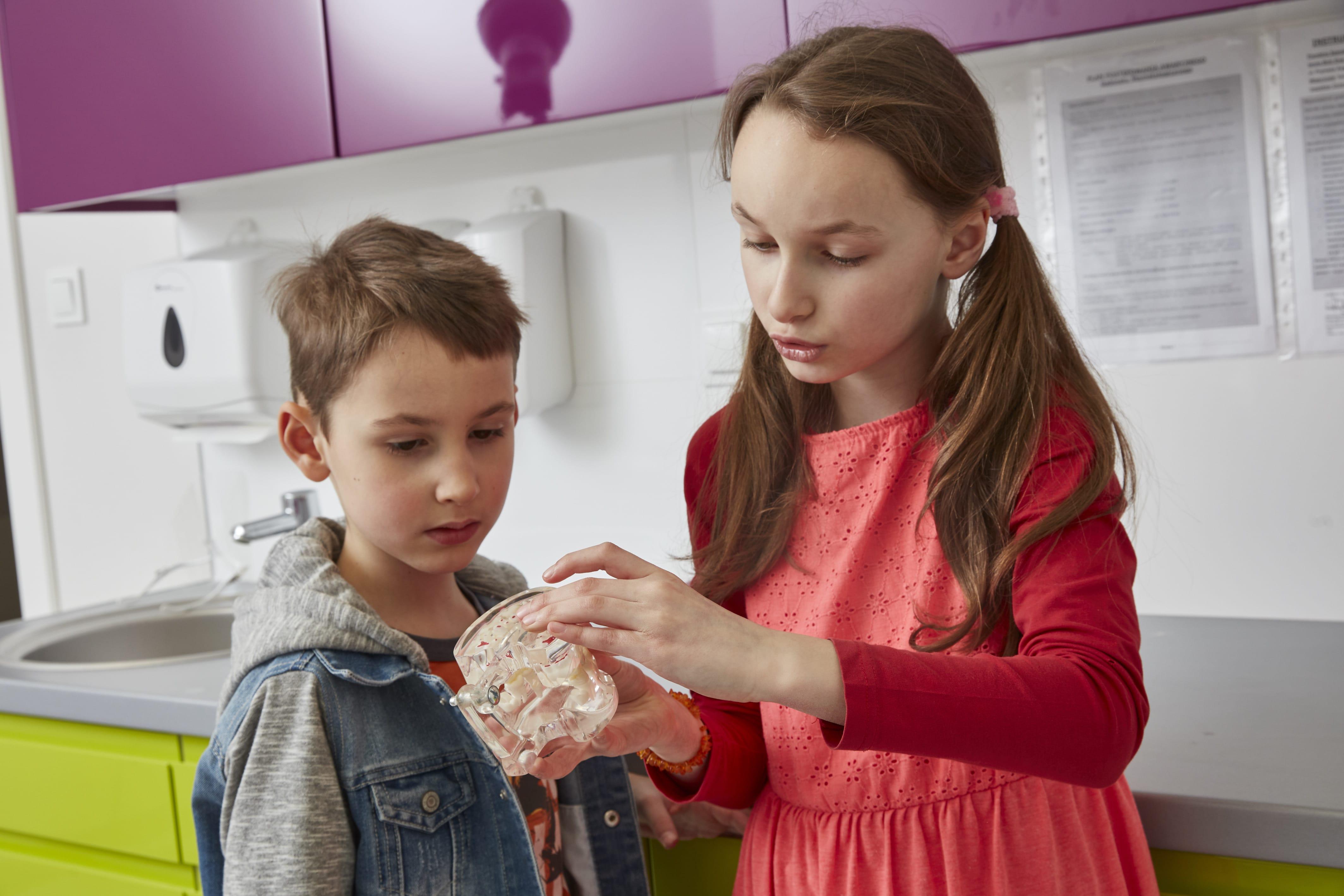 dwoje dzieci uczy się uzębienia